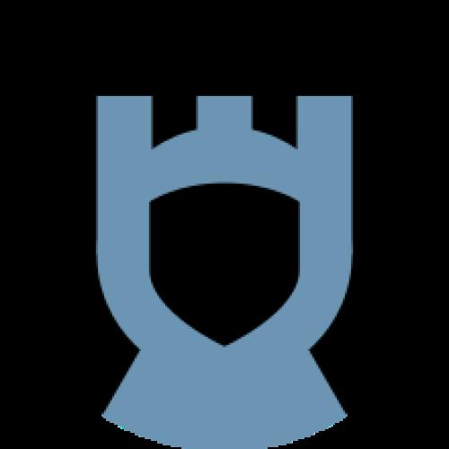 openage coding Image
